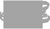logo american people